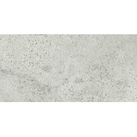 Плитка Opoczno Newstone Light Grey Lappato 29,8×59,8